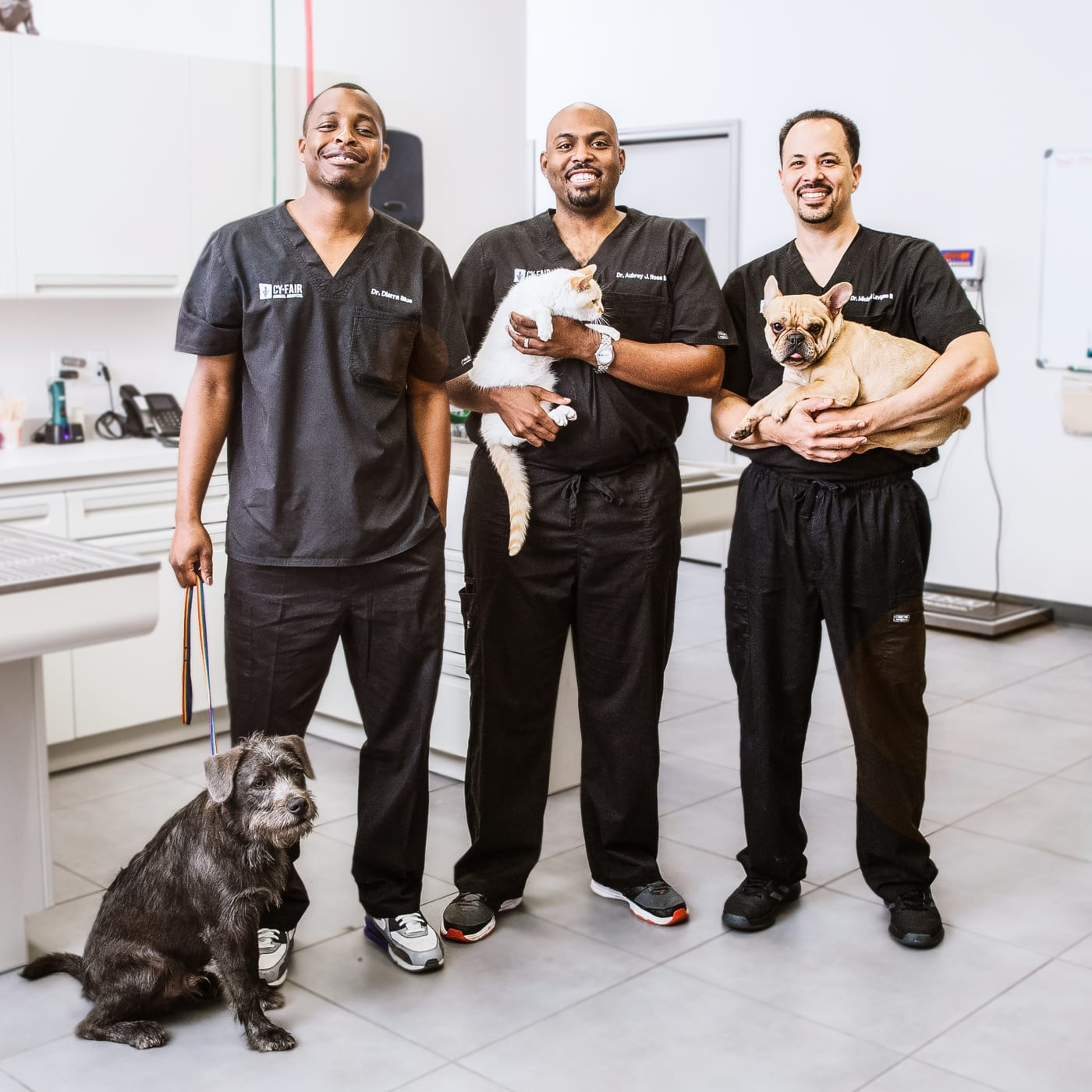 The Vet Life | Watch Full Episodes & More! - Animal Planet