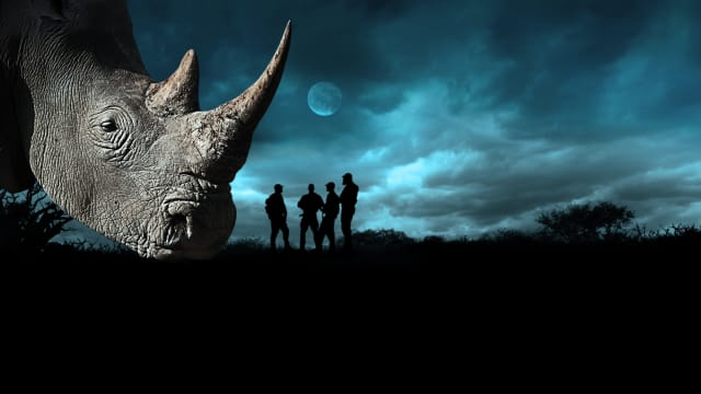Battleground: Rhino Wars on FREECABLE TV