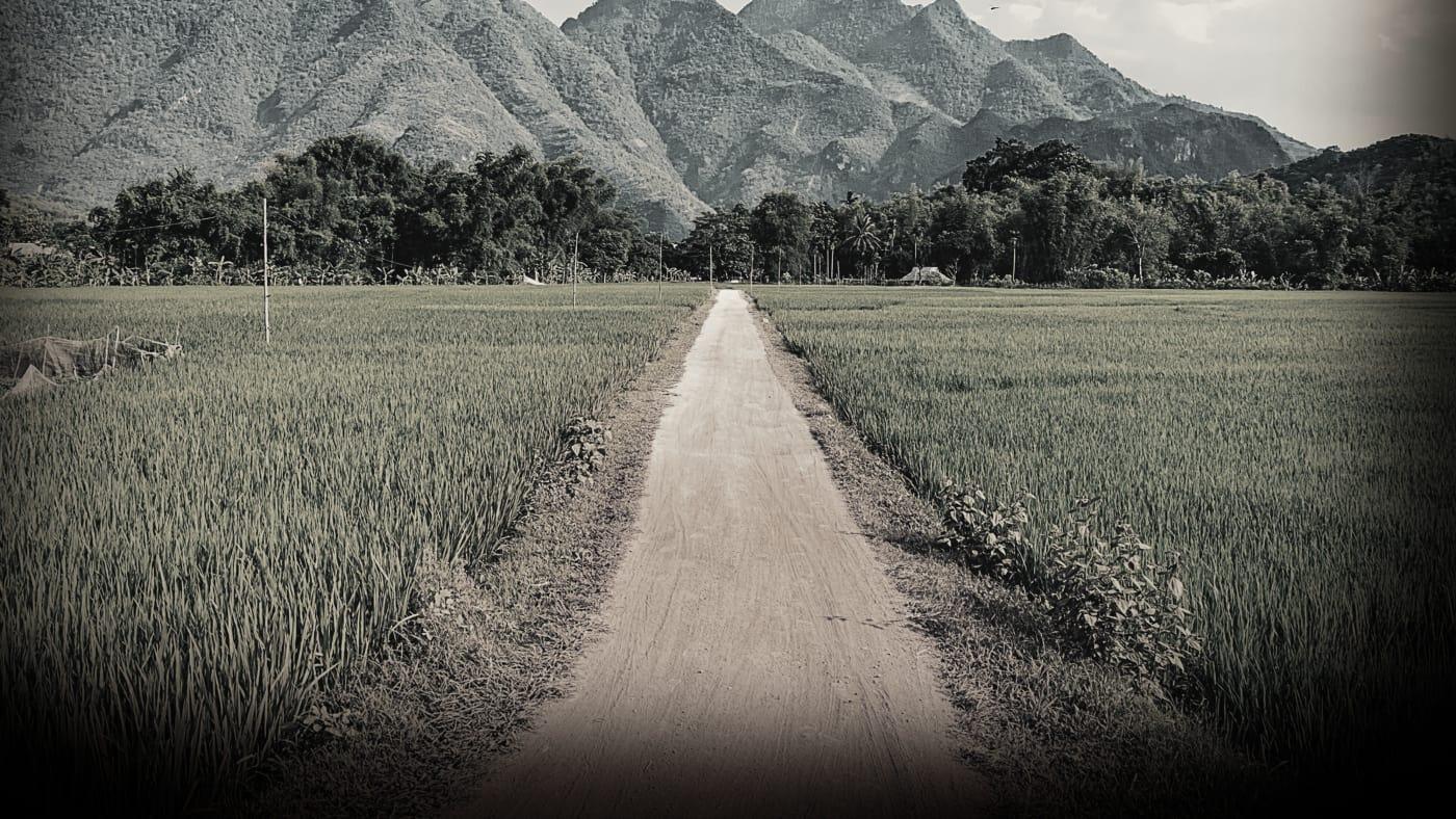 Truth and Lies: Jonestown