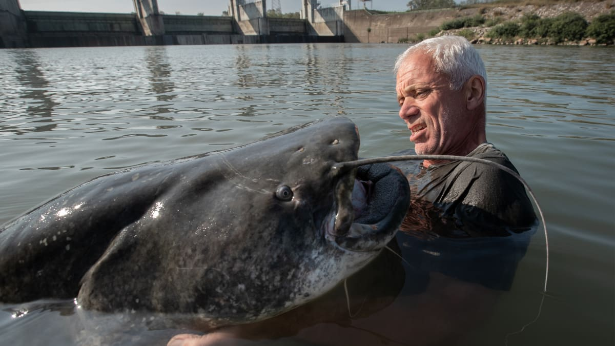 Italy S Lake Monster Jeremy Wade S Dark Waters