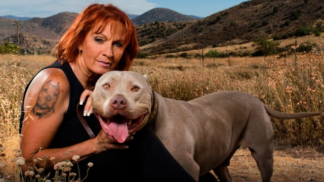 Pit Bulls & Parolees: Found a Forever Home on Free TV App