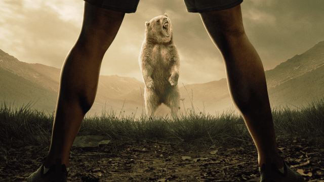Man vs. Bear on FREECABLE TV