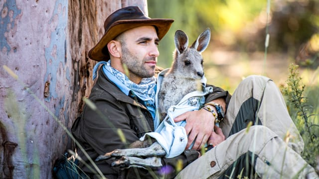 Coyote Peterson: Brave The Wild Coyote's Journal on FREECABLE TV