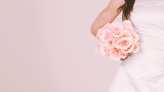 Say Yes to the Dress: Northern Edition on FREECABLE TV